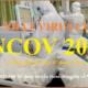 Cập nhật tình hình Virus Corona ngày 07.02.2020