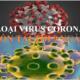 Virus Corona - NcoV có thể sống 9 ngày